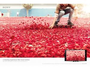 03 Nick Meek Sony Bravia Skater
